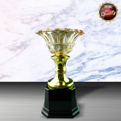 EXCLUSIVE WHITE SILVER TROPHY WITH CRYSTAL BOWL