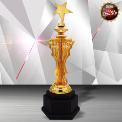 EXCLUSIVE WHITE SILVER TROPHY (STAR)